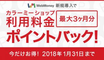 WebMoney決済導入でラージプラン利用料金が最大3ヶ月無料!