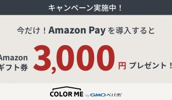 Amazonギフト券3,000円プレゼント!Amazon Pay導入応援キャンペーン実施中