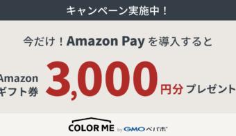 Amazon Pay利用開始で《Amazonギフト券3,000円分》プレゼント!キャンペーン実施中