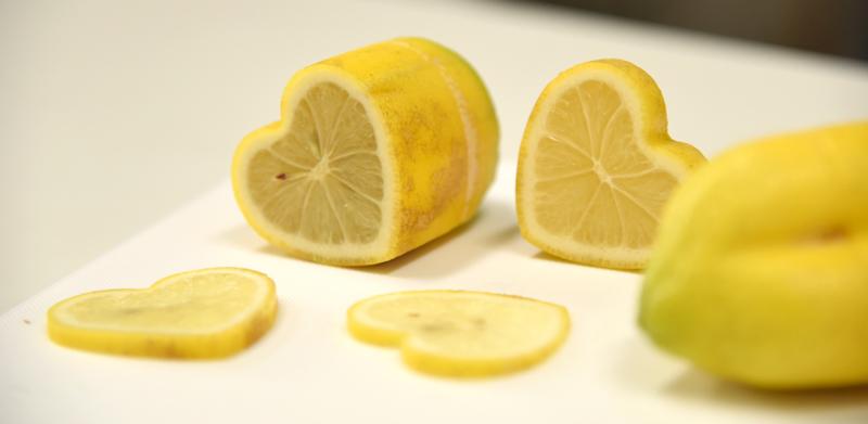 光浦醸造のハート型のレモン