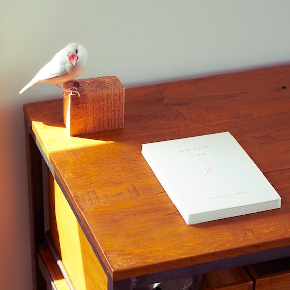 その10分、スマホじゃなくて文学に触れてみませんか?新しい本のかたち「文鳥文庫」を読んでみました。